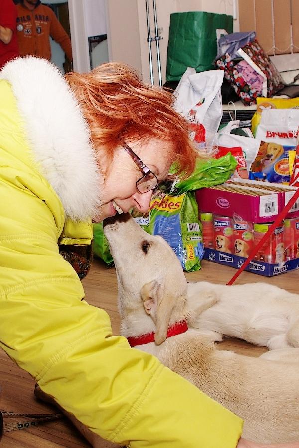 állatok karácsonyfája 6(4)