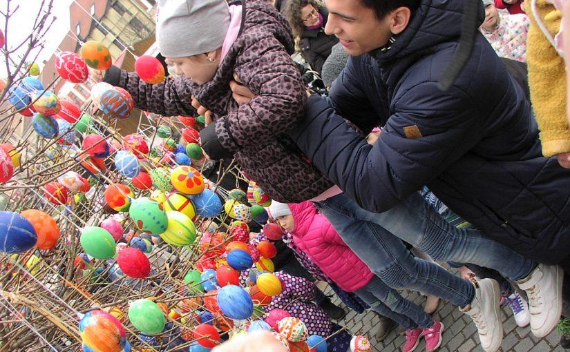 Magasan szálló hímes tojások Szombathely Fő terén
